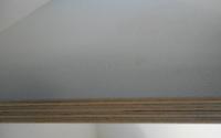 Bild von PP-Folien beschichtete Birke-Multiplexplatten, grau, 18mm