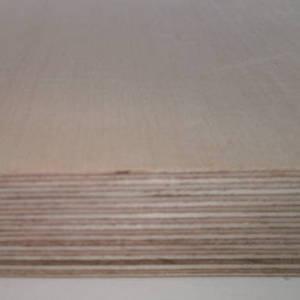 Ahorn-Multiplexplatte : Ansicht der Furnierschichten
