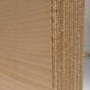 Bild von Amerikanisch-Ahorn-Multiplexplatten, 24mm, 250x125cm