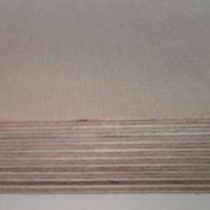 Ahorn-Multiplexplatten, messerfurniert