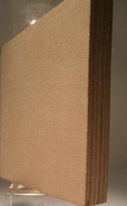 Bild von Birke-Multiplexplatten, schälfurniert, 15mm, 250x125cm, S/BB, längsfurniert