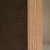 Bild von Siebdruckplatte, 18 mm, BFU100, Sieb/Film, 150 x 300 cm