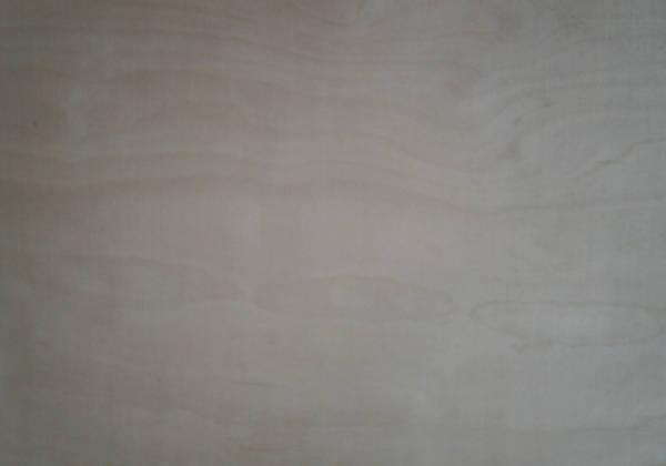 4mm Birke-Sperrholzplatte : Ansicht des Deckfurniers