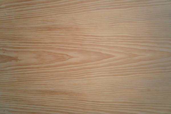 Kiefer-Sperrholzplatte : Ansicht der Furnierschichten
