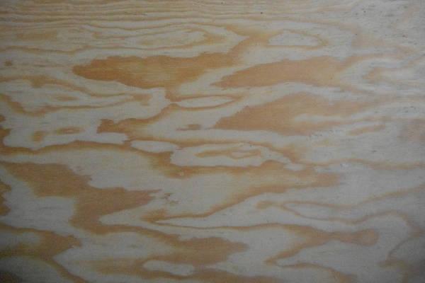 schälurnierte Kiefer-Sperrholzplatte : Ansicht des Deck-Furniers einer Seite