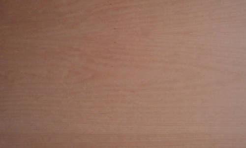 Furnieroberfläche Buche-Tischlerplatte