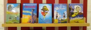 Buchen-Bücherbrett mit Film-DVD's (Langspielplatten)