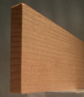Buche-Rechteckleiste 10x55 mm