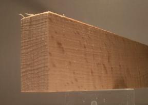 Buche-Rechteckleiste 20x40 mm