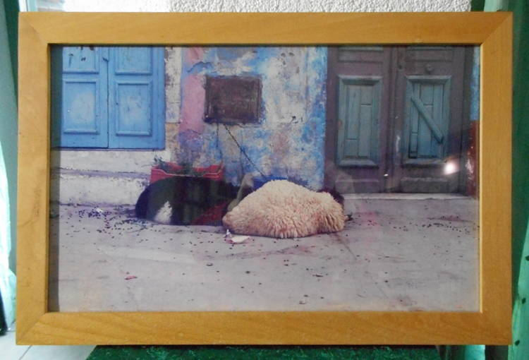Einrahmung eines Fotos mit Buche-Bilderrahmenleiste